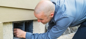 portland crawl space services, bloom crawl space services, portland oregon