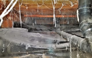 portland crawl spaces, crawl space restoration, portland oregon, oregon crawl space restoration